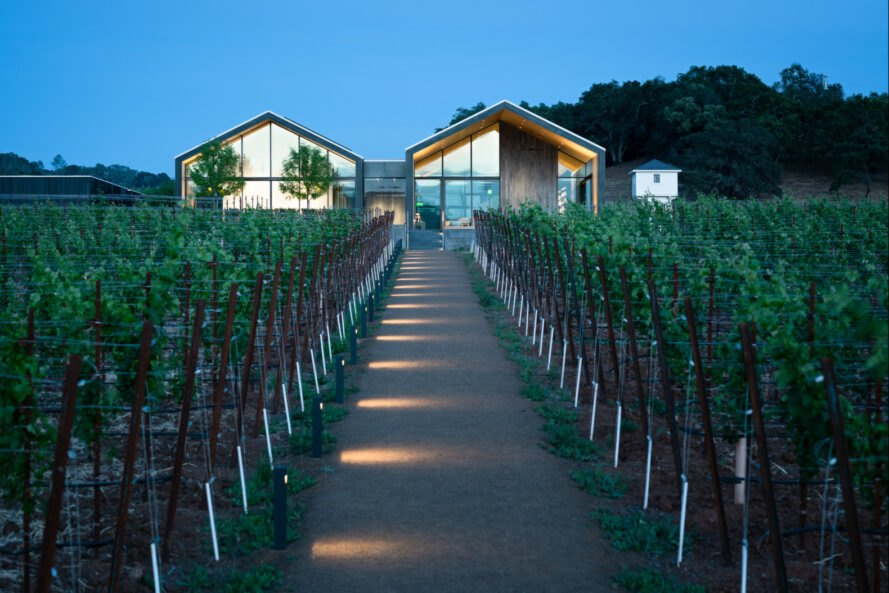 long extended building with gabled roof and rows of grapes growing in front of it